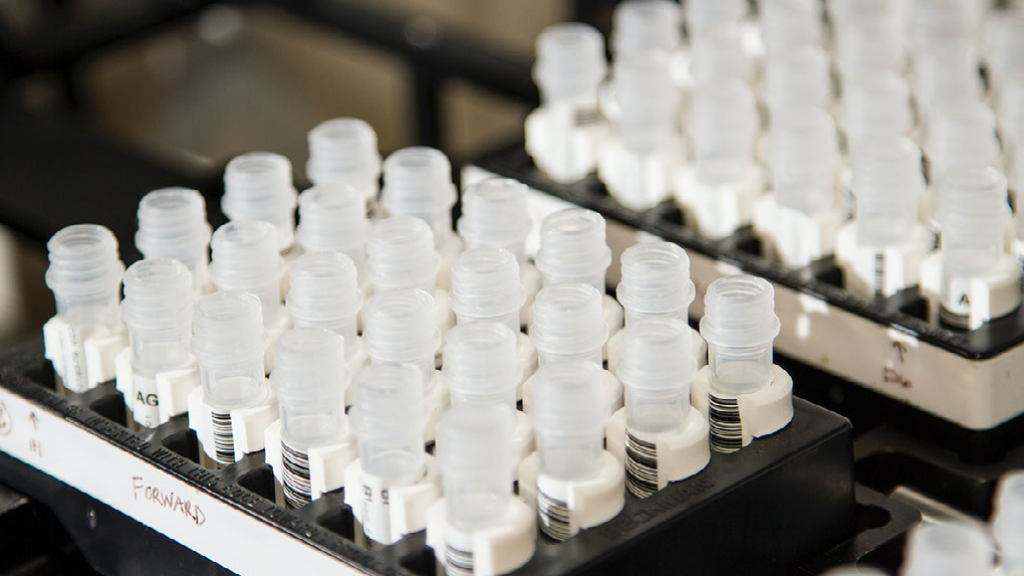 Bottle Samples In A Lab Where InstantGMP Pro Is Used For Good Manufacturing Practices.